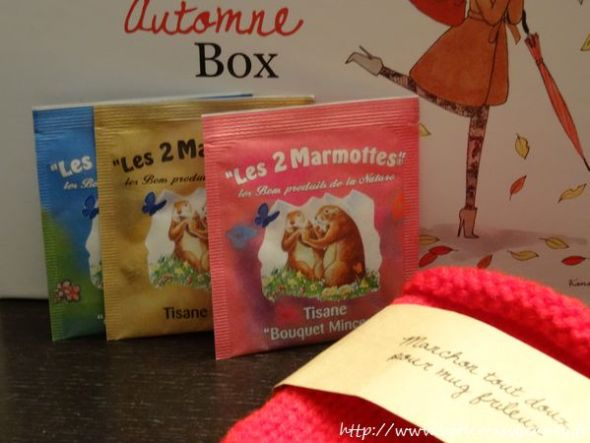 my_little_automne_box-5