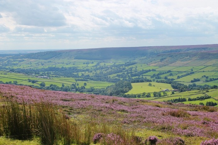 North Yorkshire August 2015 (13)