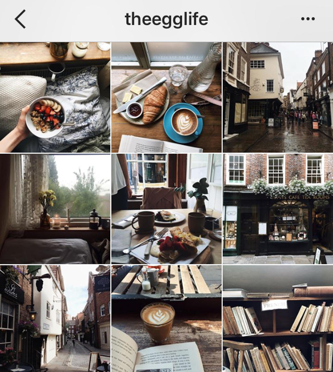 theegglife instagram