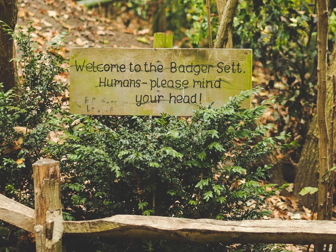 kew gardens badger sett