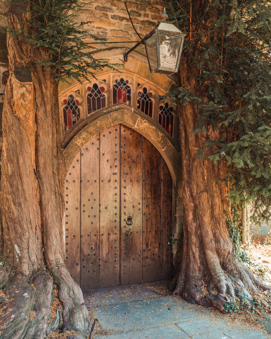 Tolkien tree in Stow-on-the-Wold