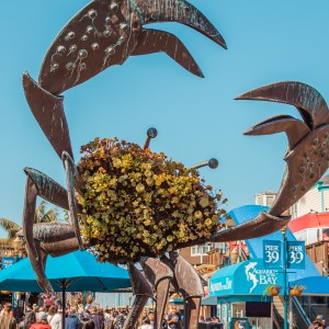 SAN FRANCISCO | A Mini Guide To Fisherman's Wharf