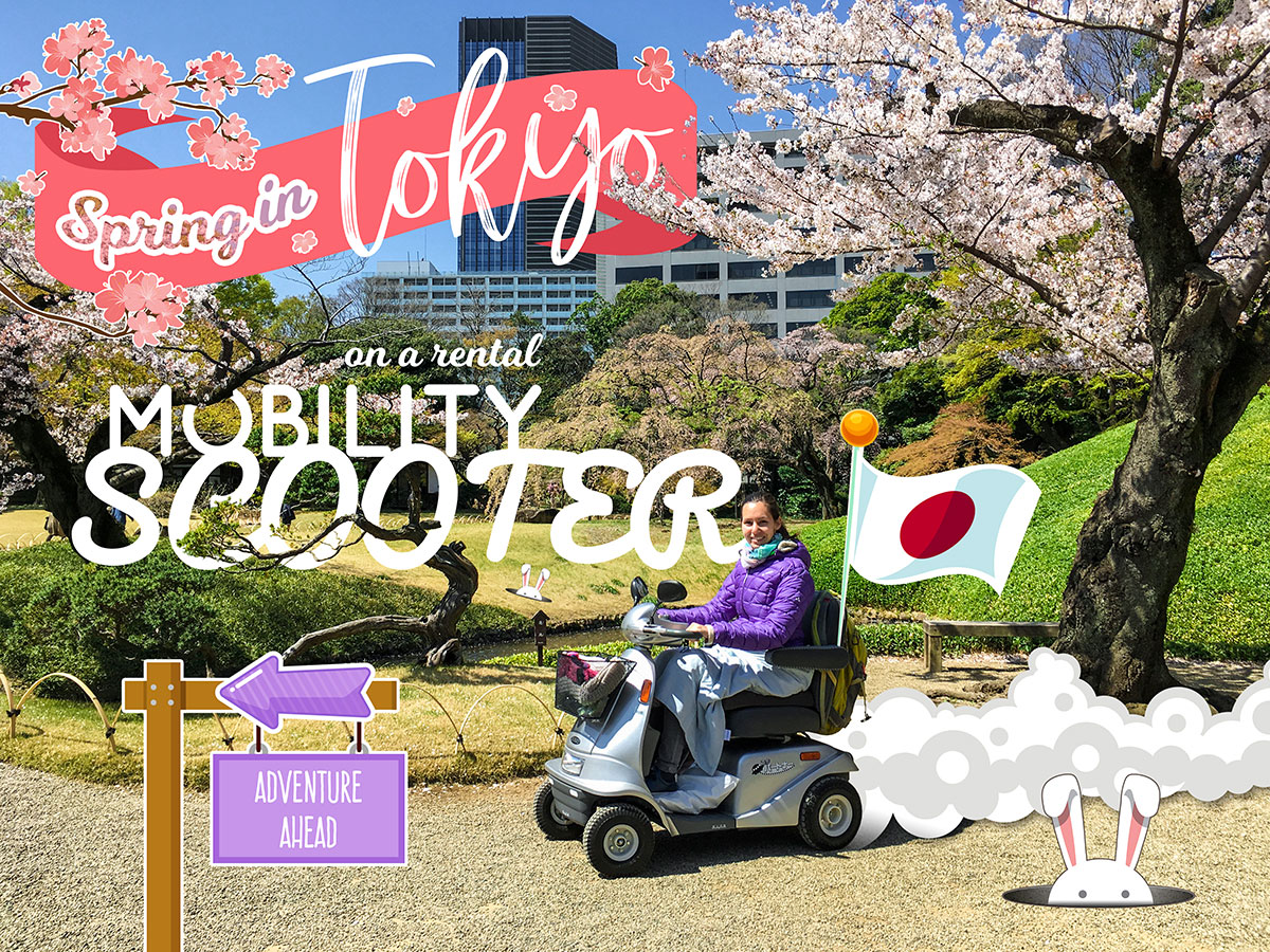 Mobility Scooter Rental Experience in Tokyo | Little Miss Turtle