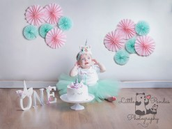 Little girl in unicorn cake smash outfit