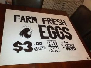 Farm Fresh Eggs $3.00