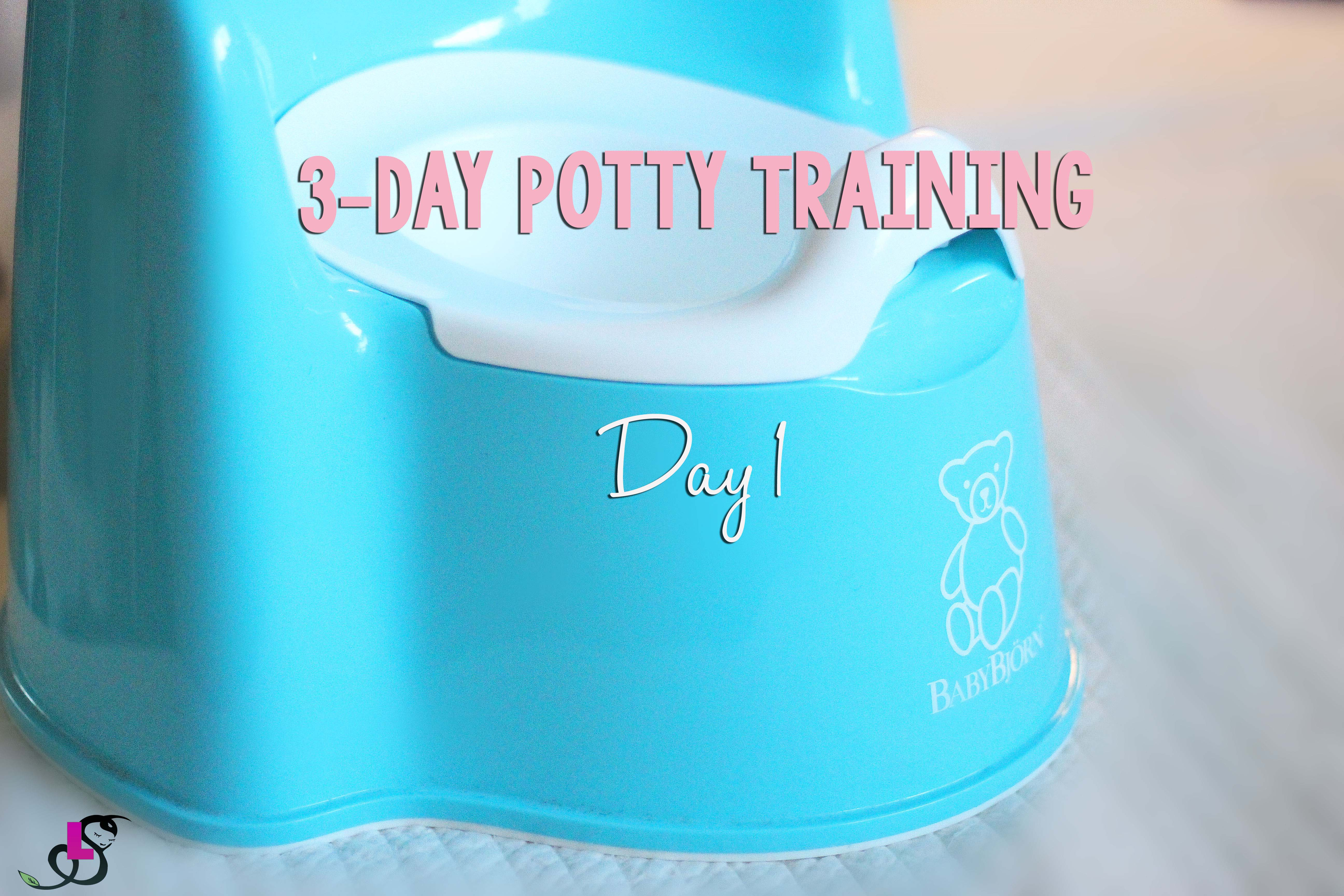 Blog Post 12.28.15 1_Day 1 of 3 Day Potty