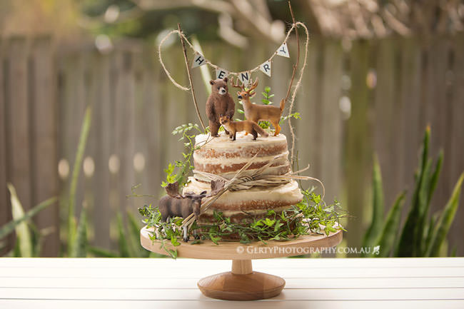 first birthday party photos woodland theme cake