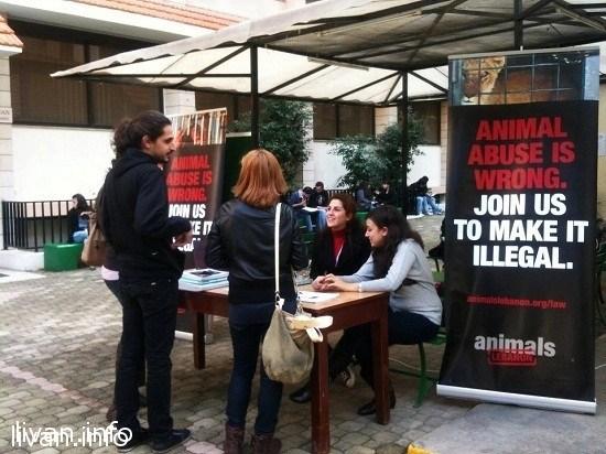 Животные Ливана нуждаются в защите и поддержке законодательством страны