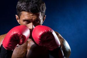 grit_boxer