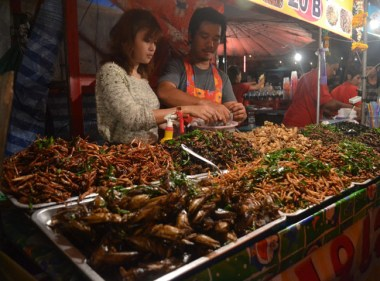 Fried Insects Thailand, Is Street Food Safe? Eating in Southeast Asia