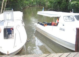 Boats in Mangroves Sandakan Islands, Borneo Eco-Tourism Sabah Malaysia