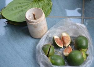 Nut, Leaf, Paste, What is Betel Nut Chewing in Thailand, Southeast Asia