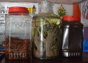 Dead Lizards in Alcohol, Top Foodie Experiences in Asia