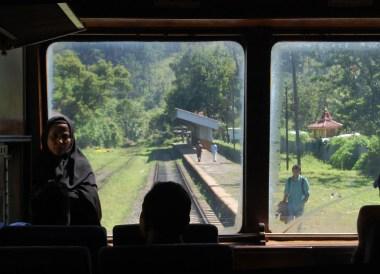Train Observation Saloon Views, South Sri Lanka Tour, Independent Travel