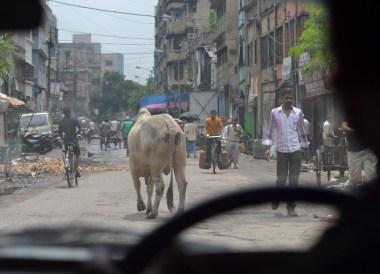 Streets of Calcutta, Tourist Areas of Kolkata City Centre, India