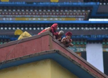 Monks on Roof, Rumtek Monastery, Gangtok Tour, Sikkim Himalayas, India