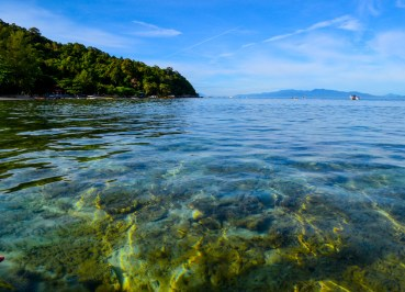 Shallow Coral Reefs, Snorkelling at Perhentian Islands Resort, Malaysia
