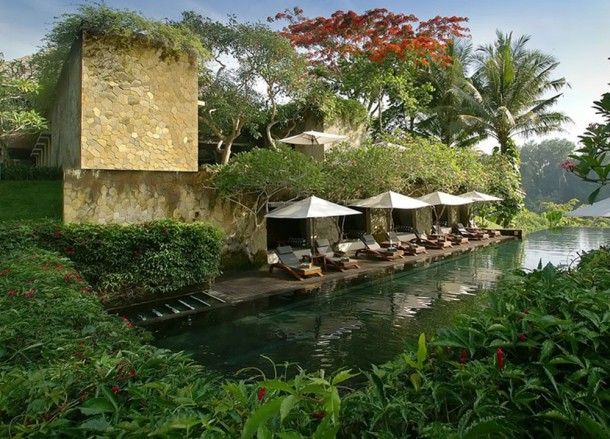 Maya Infinity Pool, Top 10 Ubud Resorts, Spas. Bali Hotels