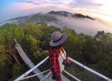 Gopro Views of Ulu Temburong Brunei, Borneo Rainforests