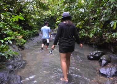 Ulu Temburong in Brunei, Phobias in Borneo Rainforests
