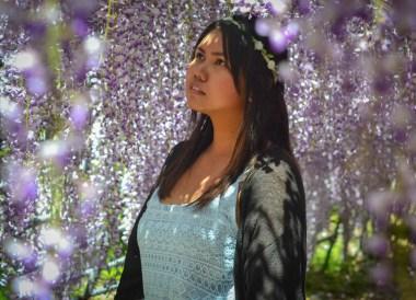 Fanfan Wilson, Travel to Kawachi Fuji Garden and Wisteria Tunnel