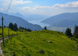 Schynige Platte, Jungfrau 3 Day Travel Pass Best Attractions