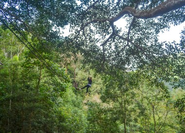 Jungle Ziplines, Living in Chiang Mai Northern Thailand