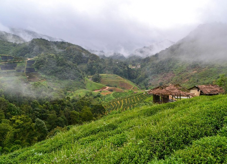 Mountain Mists. Road Trips in Northern Thailand: Chiang Mai
