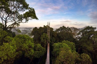 Canopy Walk Bridge, Ulu Ulu Resort, Temburong National Park Brunei Borneo