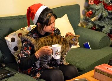 Traditions of Christmas in Northern Ireland Bangor