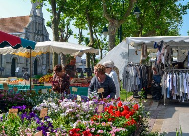 Local Markets, Road Trip in France and Southern Borders June