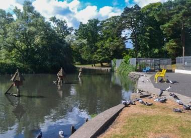 Ward Park, Top 10 Tourist Attractions in Bangor Northern Ireland