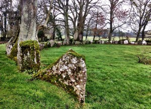 Lough Gur Stone Circle, Day Trips from Belfast in Northern Ireland