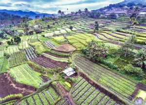Waturaka Village Moni Flores, Best places to visit in Indonesia for tourists