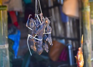 Eating Rats in India, Weird Foods in Asia, Unusual Asian Food