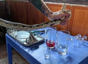 eating cobra inVietnam, Weird Foods in Asia, Unusual Asian Food