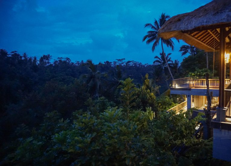 Luxury Pool Villas at HOSHINOYA Bali Ubud Resort (17)