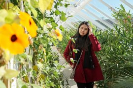 Conservatory at Walled-Garden-Bangor-Castle-Park-Northern-Ireland-19
