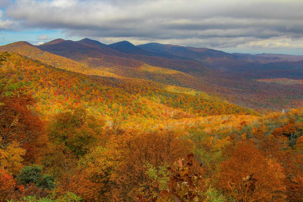 Fall Colors on Mountains in Asheville