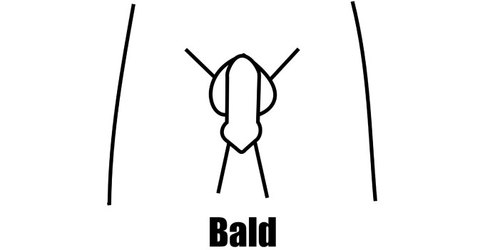 14 fun pubic hair styles & designs for men & women