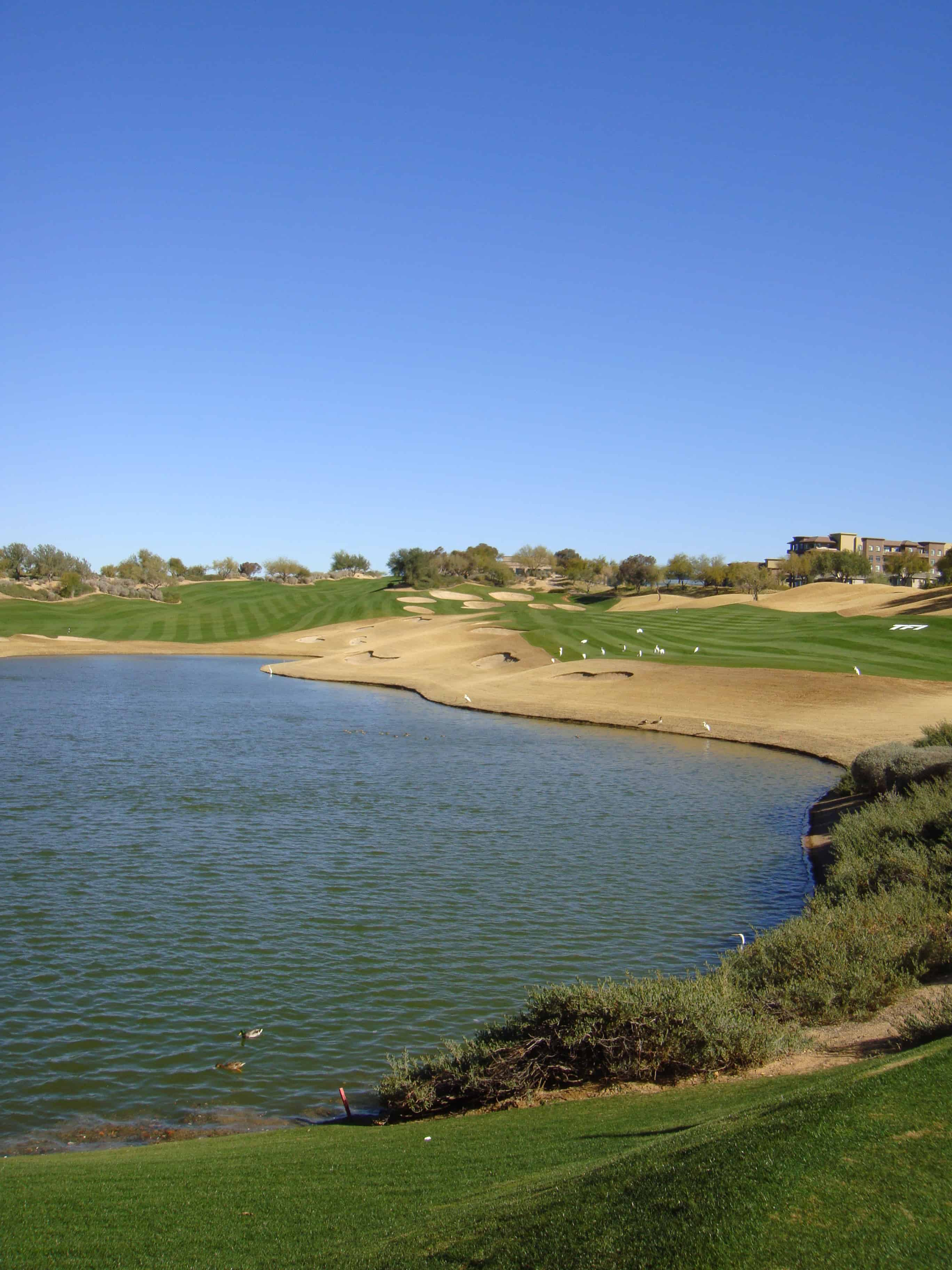 Westin Kierland Scottsdale Water Feature
