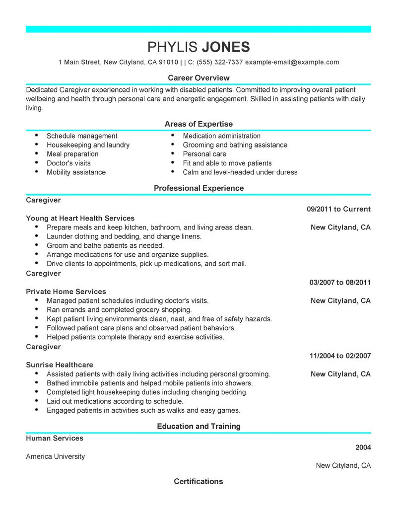 adoptions social worker resume examples social services resume
