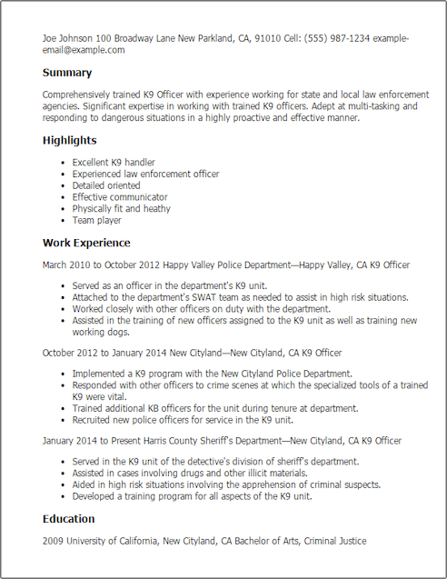 skills resume entry level security guard resume sample security
