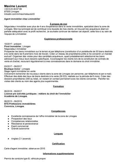 Exemple De Cv Assistant En Gestion Immobiliere Exemples Modeles De Cv