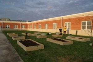 Garden Project Plots