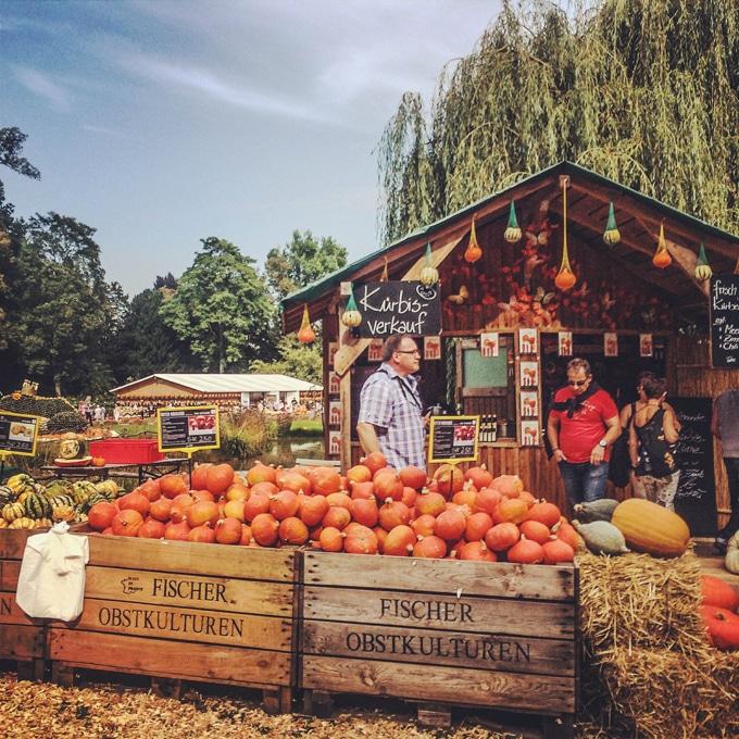 Pumpkin festival in Germany