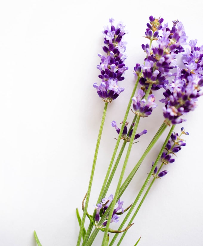 How to Cook with Lavender