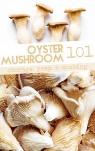 Oyster mushrooms photo
