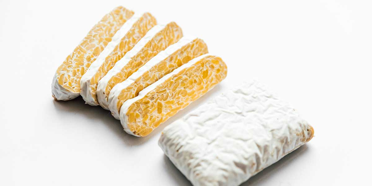Tempeh on a white background