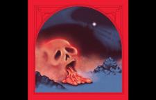 Damaged Bug 'Colt Hot Plumbs' LP (Castle Face Records)